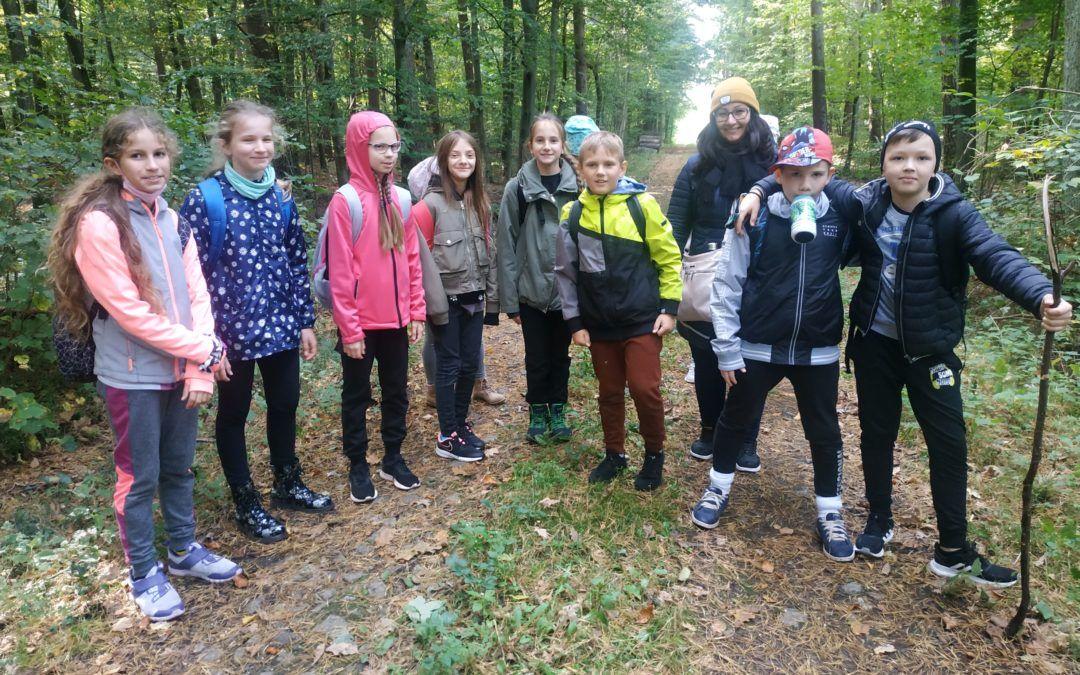 Zajęcia terenowe 4e w Nadleśnictwie Skierniewice